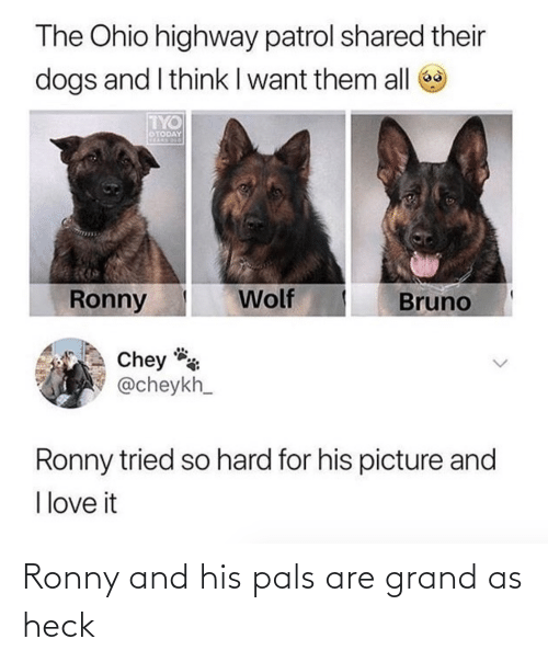 Grand: Ronny and his pals are grand as heck