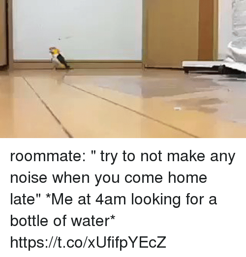 "Roommate, Home, and Water: roommate: "" try to not make any noise when you come home late""   *Me at 4am looking for a bottle of water* https://t.co/xUfifpYEcZ"
