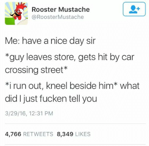 Day Sir: Rooster Mustache  @RoosterMustache  Me: have a nice day sir  *guy leaves store, gets hit by car  crossing street*  *i run out, kneel beside him* what  did I just fucken tell you  3/29/16, 12:31 PM  4,766 RETWEETS 8,349 LIKES