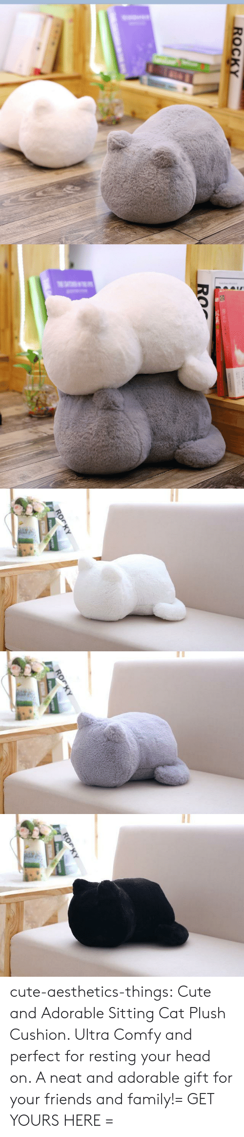 Cute, Family, and Friends: ROrKY   ROrKY cute-aesthetics-things:  Cute and Adorable Sitting Cat Plush Cushion. Ultra Comfy and perfect for resting your head on. A neat and adorable gift for your friends and family!= GET YOURS HERE =
