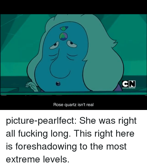 Fucking, Target, and Tumblr: Rose quartz isn't real picture-pearlfect:  She was right all fucking long. This right here is foreshadowing to the most extreme levels.