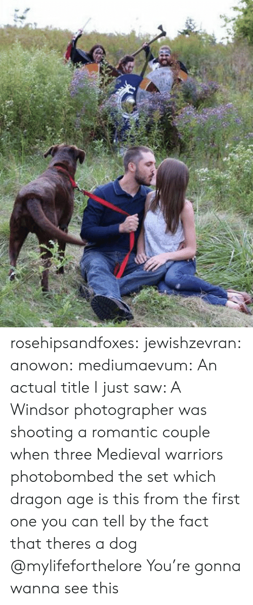 Windsor: rosehipsandfoxes:  jewishzevran:  anowon:  mediumaevum:  An actual title I just saw: A Windsor photographer was shooting a romantic couple when three Medieval warriors photobombed the set    which dragon age is this from  the first one you can tell by the fact that theres a dog   @mylifeforthelore You're gonna wanna see this