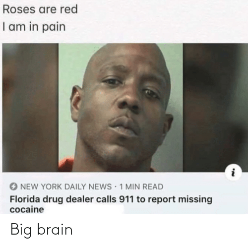 Drug Dealer, New York, and News: Roses are red  I am in pain  O NEW YORK DAILY NEWS 1 MIN READ  Florida drug dealer calls 911 to report missing  cocaine Big brain