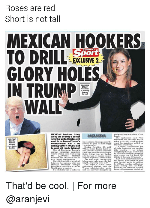"""pena nieto: Roses are red  Short is not tall  MEXICAN HOOKERS  TO DRILL  Sport  EXCLUSIVE 2  GLORY HOLES  IN TRUMP  SUCKING  GREAT:  Conchita  is looking  forward  to wal  WALL  MEXICAN hookers living  and stop glory hole abuse of the  By BRAD CHADWICK  barrier.  along the country's border  The spokesman said: """"The  news Sunday sport co.uk  with the United States will  HERE WE  President has said this wall is  BLOW:  cash in on Donald Trump's  for Mexicans ng across the  going to be great  and we don't  Hookers  Wall  controversial by  will drill  drilling GLORY HOLES in it  Latino whores  Of course, the  glory holes  Hooker Conchita, 28, said  to suck off randy Gringos!  When Senior Trum  build his  already thought of how to solve  One of President Trump's  like this  central campa  glory hole  agujero de la Gloria  he says the first crazy darn thing  along Senior Gringo put his Yankee  the  2,000-mile  frontier  pito through, we suckee suckee, that comes into his head. He  thinks it through. He's great.  between the two countries to  Last week senior members of  halt illegal immigration.  We have a wall that is 3,200  the Trump administration said  The plan has led to a stand-off kilometres  that the wall wou  with the length  between the nations  by a 20 per cent tax on Mexican  Mexican President Enrique  Last night a White  House  oods coming  nto the USA  ng a visit to  spokesman claimed that the  Pena Nieto cance  uding cars, avocados, jumping  Washington in protest.  beans, chihuahuas and sombreros  But while the wa  s bad news  ook into the wa  s design to try That'd be cool. 