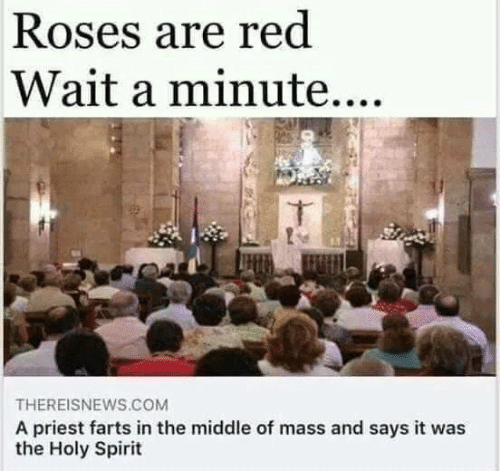 Roses Are: Roses are red  Wait a minute....  THEREISNEWS.COM  A priest farts in the middle of mass and says it was  the Holy Spirit