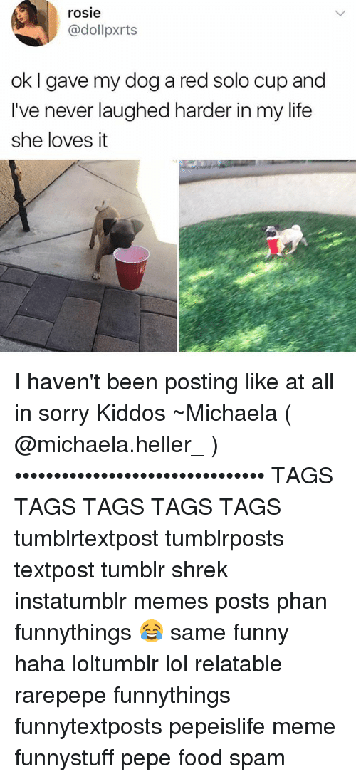Rarepepe: rosie  @dollpxrts  ok I gave my dog a red solo cup and  ive never laughed harder in my life  I've never laughed harder in my life  she loves it I haven't been posting like at all in sorry Kiddos ~Michaela ( @michaela.heller_ )•••••••••••••••••••••••••••••••• TAGS TAGS TAGS TAGS TAGS tumblrtextpost tumblrposts textpost tumblr shrek instatumblr memes posts phan funnythings 😂 same funny haha loltumblr lol relatable rarepepe funnythings funnytextposts pepeislife meme funnystuff pepe food spam