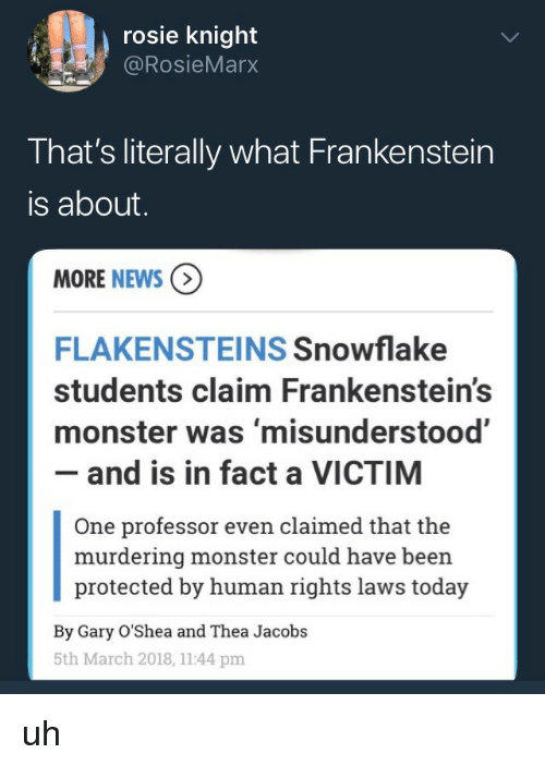 thea: rosie knight  @RosieMarx  That's literally what Frankenstein  is about  MORE NEWS  FLAKENSTEINS Snowflake  students claim Frankenstein's  monster was 'misunderstood'  - and is in fact a VICTIM  One professor even claimed that the  murdering monster could have been  protected by human rights laws today  By Gary O'Shea and Thea Jacobs  5th March 2018, 1144 pm uh