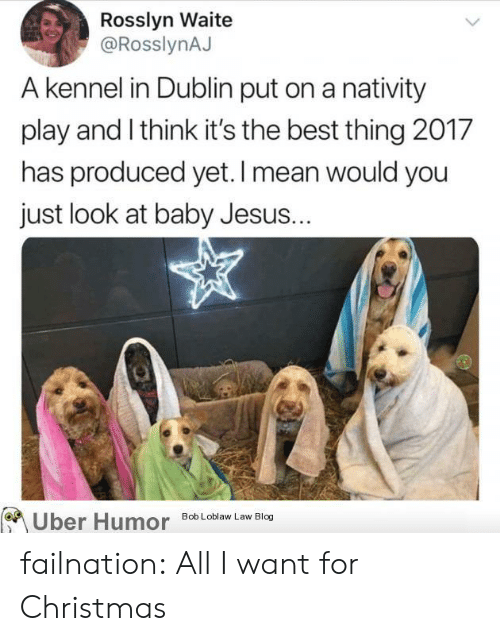 Christmas, Jesus, and Tumblr: Rosslyn Waite  @RosslynAJ  A kennel in Dublin put on a nativity  play and Ithink it's the best thing 2017  has produced yet. I mean would you  just look at baby Jesus..  Uber Humo  Bob Loblaw Law Blog failnation:  All I want for Christmas