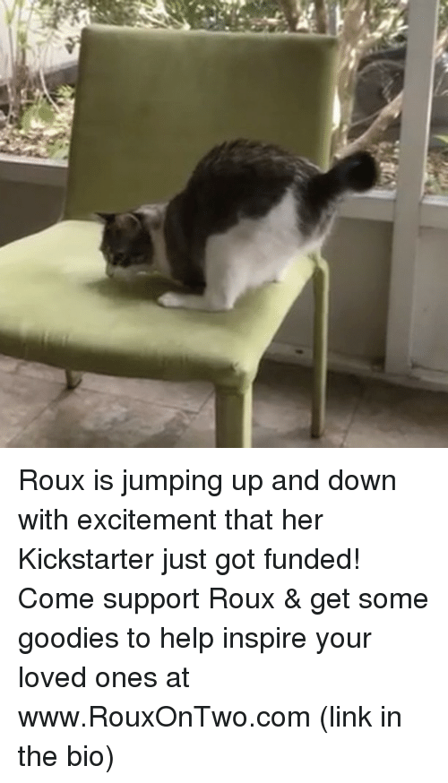Memes, Excite, and Kickstarter: Roux is jumping up and down with excitement that her Kickstarter just got funded! Come support Roux & get some goodies to help inspire your loved ones at www.RouxOnTwo.com (link in the bio)