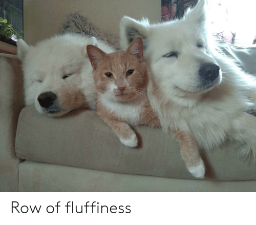 Fluffiness: Row of fluffiness