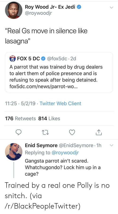 "No Snitch: Roy Wood Jr- Ex Jedi  @roywoodjr  ""Real Gs move in silence like  lasagna  台FOX 5 DC $ @fox5dc . 2d  A parrot that was trained by drug dealers  to alert them of police presence and is  refusing to speak after being detained  fox5dc.com/news/parrot-wo  11:25 5/2/19 - Twitter Web Client  176 Retweets 814 Likes  Enid Seymore @EnidSeymore 1h v  Replying to @roywoodjr  Gangsta parrot ain't scared  Whatchugondo? Lock him up in a  cage? Trained by a real one Polly is no snitch. (via /r/BlackPeopleTwitter)"