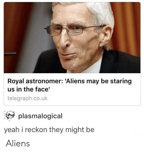 telegraph.co.uk: Royal astronomer: Aliens may be staring  us in the face  telegraph.co.uk  plasmalogical  yeah i reckon they might be Aliens
