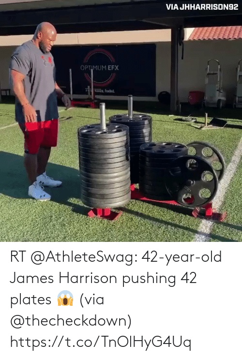 james: RT @AthleteSwag: 42-year-old James Harrison pushing 42 plates 😱 (via @thecheckdown) https://t.co/TnOlHyG4Uq