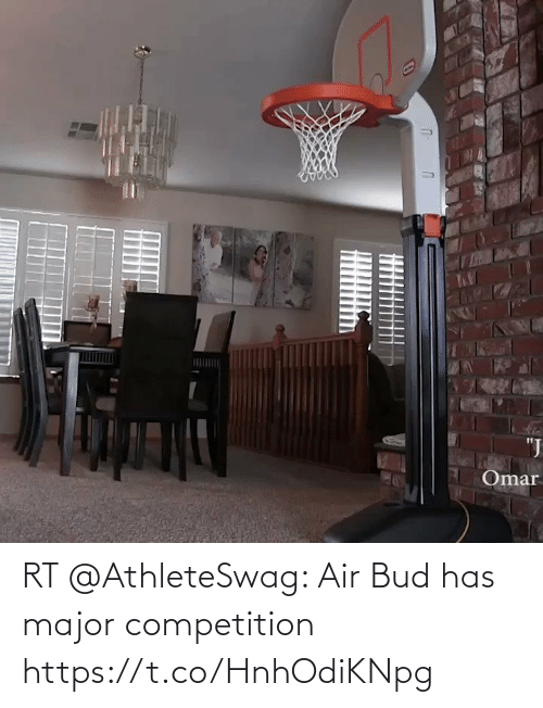 competition: RT @AthleteSwag: Air Bud has major competition https://t.co/HnhOdiKNpg
