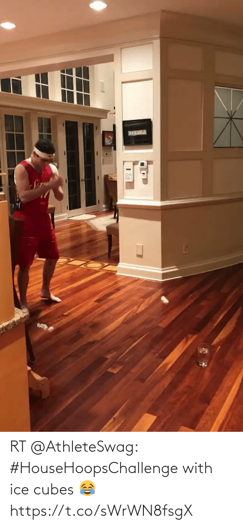 Ice Cubes: RT @AthleteSwag: #HouseHoopsChallenge with ice cubes 😂 https://t.co/sWrWN8fsgX