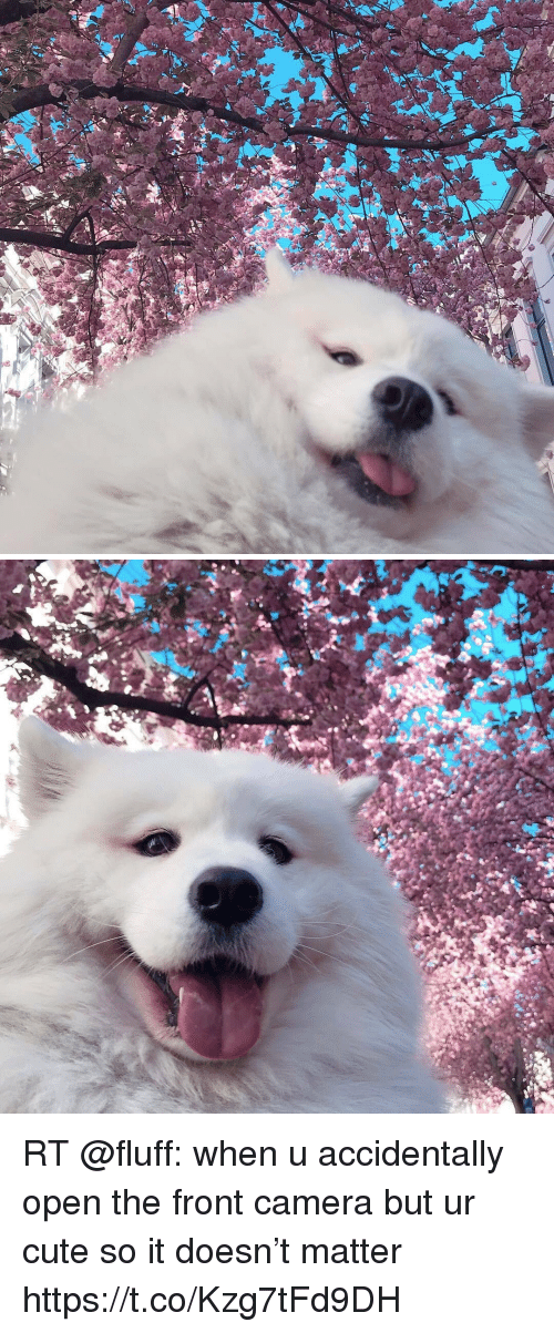 Cute, Memes, and Camera: RT @fluff: when u accidentally open the front camera but ur cute so it doesn't matter https://t.co/Kzg7tFd9DH