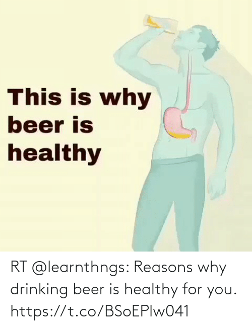 Beer: RT @learnthngs: Reasons why drinking beer is healthy for you. https://t.co/BSoEPlw041