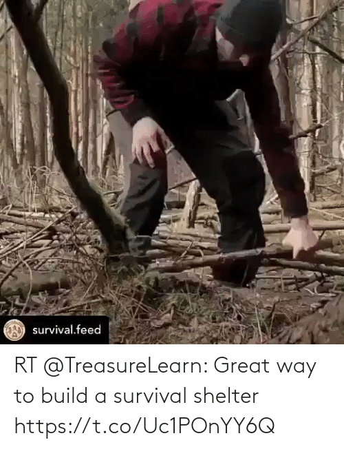 survival: RT @TreasureLearn: Great way to build a survival shelter https://t.co/Uc1POnYY6Q
