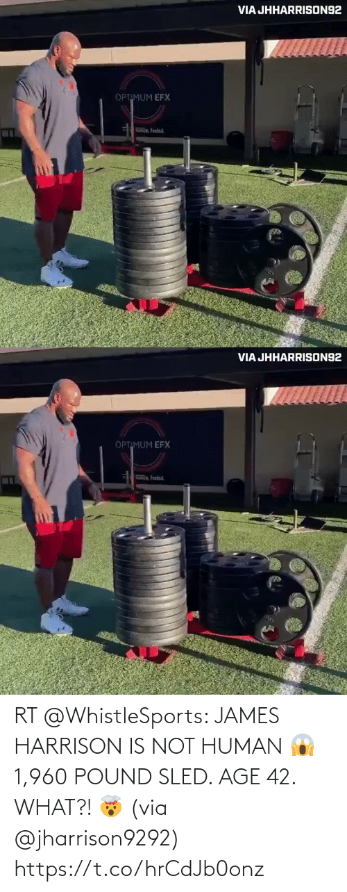 james: RT @WhistleSports: JAMES HARRISON IS NOT HUMAN 😱   1,960 POUND SLED.   AGE 42.   WHAT?! 🤯  (via @jharrison9292) https://t.co/hrCdJb0onz