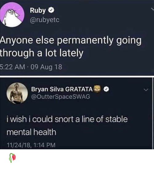 snort: Ruby  @rubyetc  Anyone else permanently going  through a lot lately  5:22 AM 09 Aug 18  Bryan Silva GRATATA  @OutterSpacesWAG  i wish i could snort a line of stable  mental health  11/24/18, 1:14 PM 🥀