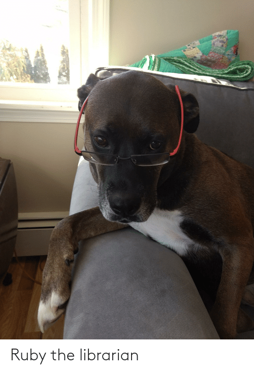 librarian: Ruby the librarian