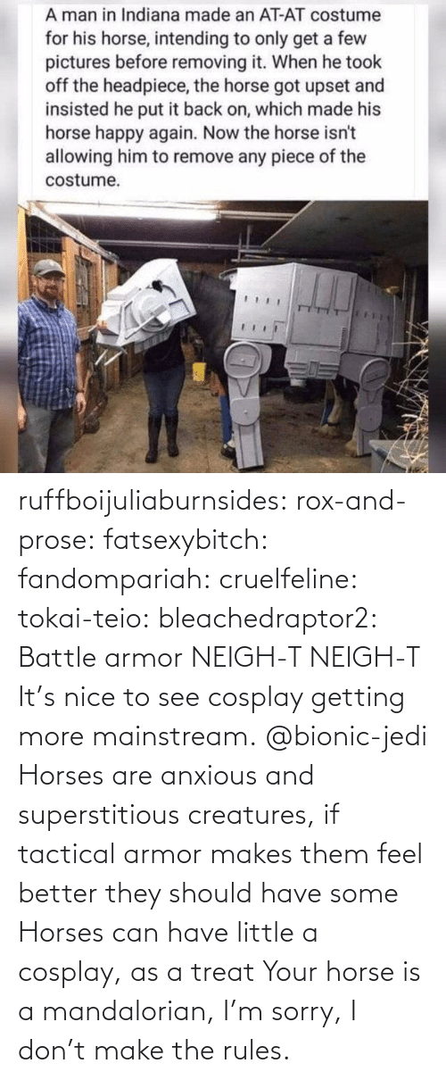 Jedi: ruffboijuliaburnsides:  rox-and-prose:  fatsexybitch:   fandompariah:  cruelfeline:  tokai-teio:  bleachedraptor2: Battle armor    NEIGH-T  NEIGH-T    It's nice to see cosplay getting more mainstream.    @bionic-jedi     Horses are anxious and superstitious creatures, if tactical armor makes them feel better they should have some    Horses can have little a cosplay, as a treat  Your horse is a mandalorian, I'm sorry, I don't make the rules.