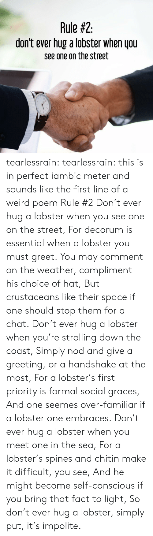 Tumblr, Weird, and Blog: Rule #2  don't ever hug a lobster when you  see one on the street tearlessrain: tearlessrain: this is in perfect iambic meter and sounds like the first line of a weird poem Rule #2 Don't ever hug a lobster when you see one on the street, For decorum is essential when a lobster you must greet. You may comment on the weather, compliment his choice of hat, But crustaceans like their space if one should stop them for a chat.  Don't ever hug a lobster when you're strolling down the coast, Simply nod and give a greeting, or a handshake at the most, For a lobster's first priority is formal social graces, And one seemes over-familiar if a lobster one embraces.  Don't ever hug a lobster when you meet one in the sea, For a lobster's spines and chitin make it difficult, you see, And he might become self-conscious if you bring that fact to light, So don't ever hug a lobster, simply put, it's impolite.