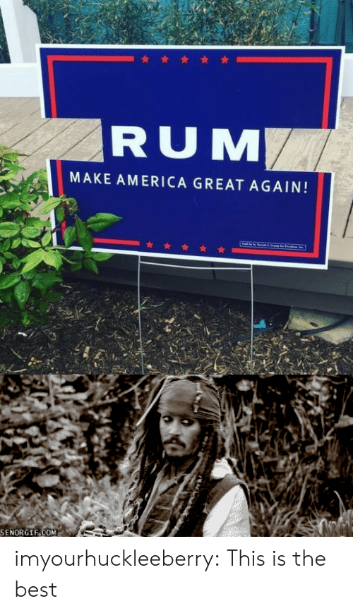 America, Tumblr, and Best: RUM  MAKE AMERICA GREAT AGAIN!   SENORGIF COM imyourhuckleeberry:  This is the best