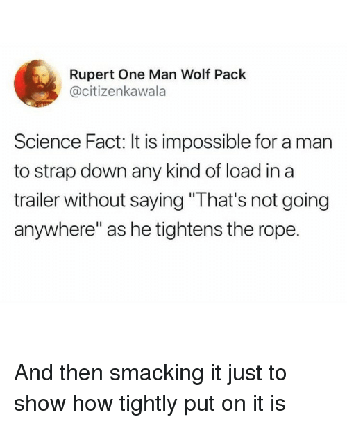 "rupert: Rupert One Man Wolf Pack  @citizenkawala  Science Fact: It is impossible for a man  to strap down any kind of load in a  trailer without saying ""That's not going  anywhere"" as he tightens the rope. And then smacking it just to show how tightly put on it is"