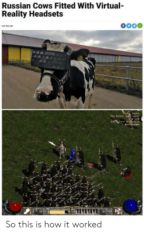 Virtual Reality, Russian, and Reality: Russian Cows Fitted With Virtual-  Reality Headsets  f  one day ago  GARE SADFI  THE SECET COR LEVEL  Di LTY NidmAR  EXPANSION So this is how it worked