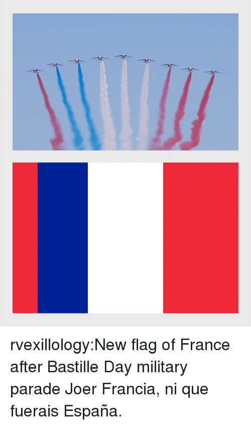 Reddit, Tumblr, and Blog: rvexillology:New flag of France after Bastille Day military parade Joer Francia, ni que fuerais España.