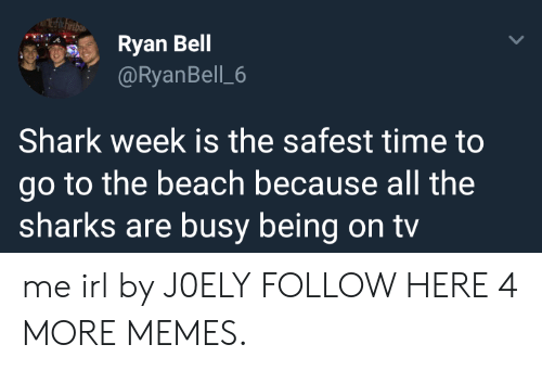 Dank, Memes, and Target: Ryan Bell  @RyanBell 6  Shark week is the safest time to  go to the beach because all the  sharks are busy being on tv me irl by J0ELY FOLLOW HERE 4 MORE MEMES.