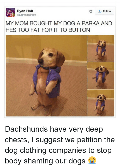 dachshunds: Ryan Holt  @LightningHoltt  #  Follow  MY MOM BOUGHT MY DOG A PARKA AND  HES TOO FAT FOR IT TO BUTTON Dachshunds have very deep chests, I suggest we petition the dog clothing companies to stop body shaming our dogs 😭