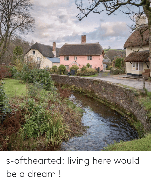 A Dream: s-ofthearted: living here would be a dream !