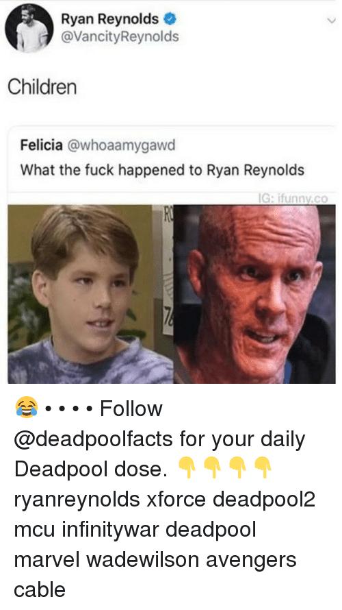 Children, Memes, and Deadpool: S.  Ryan Reynolds  @VancityReynolds  Children  Felicia @whoaamygawd  What the fuck happened to Ryan Reynolds  G:ifunnv.co 😂 • • • • Follow @deadpoolfacts for your daily Deadpool dose. 👇👇👇👇 ryanreynolds xforce deadpool2 mcu infinitywar deadpool marvel wadewilson avengers cable