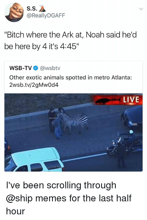 """halfs: S.S  @ReallyDGAFF  """"Bitch where the Ark at, Noah said he'd  be here by 4 it's 4:45""""  WSB-TV @wsbtv  Other exotic animals spotted in metro Atlanta:  2wsb.tv/2gMwOd4  LIVE I've been scrolling through @ship memes for the last half hour"""