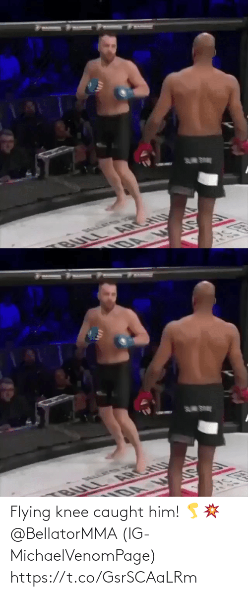 Knee: S SE  BULL ARCHU  DA   S SE  U  BULL A CH Flying knee caught him! 🦵💥 @BellatorMMA (IG-MichaelVenomPage) https://t.co/GsrSCAaLRm