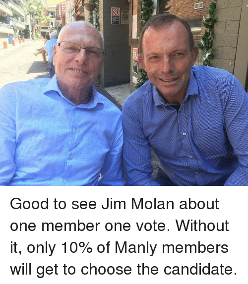 Dank, Candide, and 🤖: S1  WN Good to see Jim Molan about one member one vote. Without it, only 10% of Manly members will get to choose the candidate.