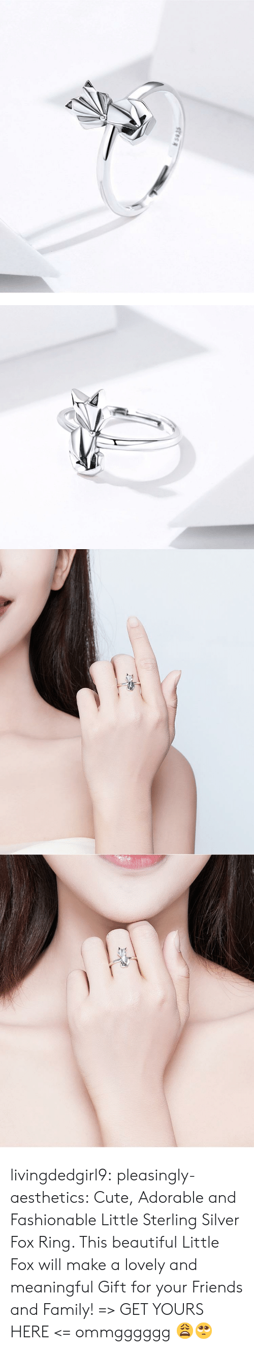 Beautiful, Cute, and Family: s935 livingdedgirl9:  pleasingly-aesthetics: Cute, Adorable and Fashionable Little Sterling Silver Fox Ring. This beautiful Little Fox will make a lovely and meaningful Gift for your Friends and Family! => GET YOURS HERE <=   ommgggggg 😩🥺