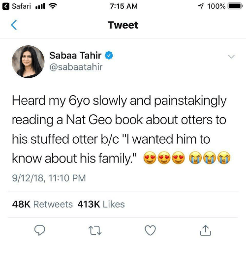"""Otters: Safari.  7:15 AM  100%  Tweet  Sabaa Tahir  @sabaatahir  Heard my 6yo slowly and painstakingly  reading a Nat Geo book about otters to  his stuffed otter b/c"""" wanted him to  know about his family.""""  9/12/18, 11:10 PM  48K Retweets 413K Likes"""
