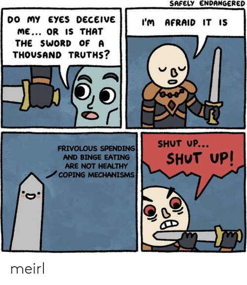 Shut Up, Sword, and MeIRL: SAFELY ENDANGERED  DO my EYES DECEIVE  I'm AFRAID IT IS  ME.. OR IS THAT  THE SWORD OF A  THOUSAND TRUTHS?  SHUT UP...  FRIVOLOUS SPENDING  SHUT UP!  AND BINGE EATING  ARE NOT HEALTHY  COPING MECHANISMS  D meirl