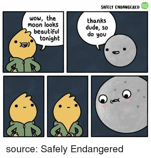Beautiful, Dude, and Wow: SAFELY ENDANGERED  WEB  TOON  wow, the  moon looks  beautiful  thanks  dude, so  do you  toni9  3) source: Safely Endangered
