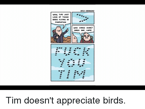 birds flying: SAFELY ENDANGERED  Wow, TIim JUST  LOOK AT THOSE  BIRDS FLYING IN  FORMATION  WHo CARES DUDE?  BIRDS ARE LAME