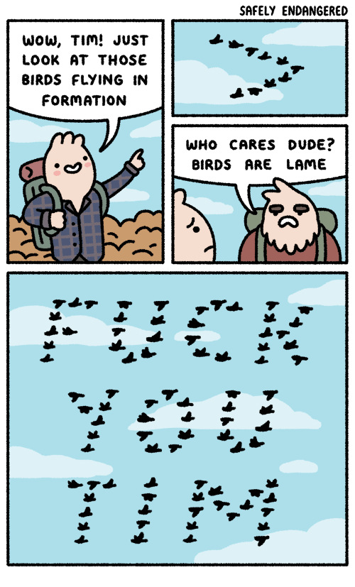 birds flying: SAFELY ENDANGERED  WoW, TIm! JUST  LOOK AT THOSE  BIRDS FLYING IN  FORMATION  WHO CARES DUDE?  BIRDS ARE LAME