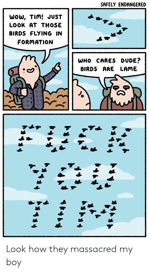 birds flying: SAFELY ENDANGERED  WoW, TIm! JUST  LOOK AT THOSE  BIRDS FLYING IN  FORMATION  WHO CARES DUDE?  BIRDS ARE LAME Look how they massacred my boy