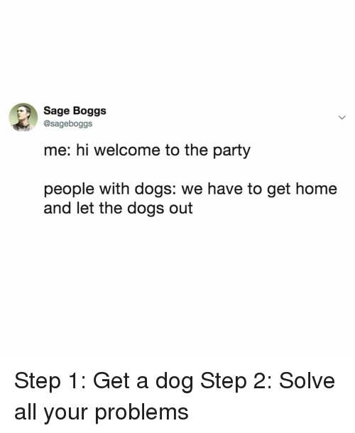 Dogs, Party, and Home: Sage Boggs  @sageboggs  me: hi welcome to the party  people with dogs: we have to get home  and let the dogs out Step 1: Get a dog Step 2: Solve all your problems