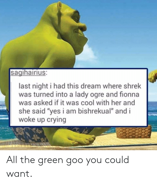 "I Woke Up: sagihairius:  last night i had this dream where shrek  was turned into a lady ogre and fionna  was asked if it was cool with her and  she said ""yes i am bishrekual"" and i  woke up crying All the green goo you could want."