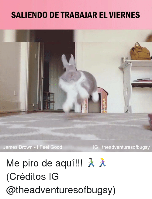 James Brown, Memes, and Good: SALIENDO DE TRABAJAR EL VIERNES  James Brown I Feel Good  G theadventuresofbugsy Me piro de aquí!!! 🏃🏻‍♂️🏃🏼‍♀️  (Créditos IG @theadventuresofbugsy)
