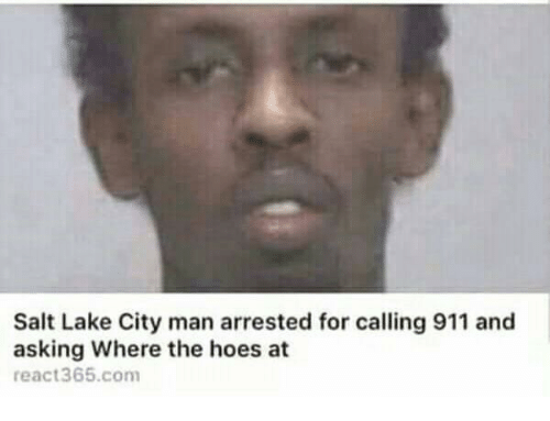 The Hoes: Salt Lake City man arrested for calling 911 and  asking Where the hoes at  react365.com