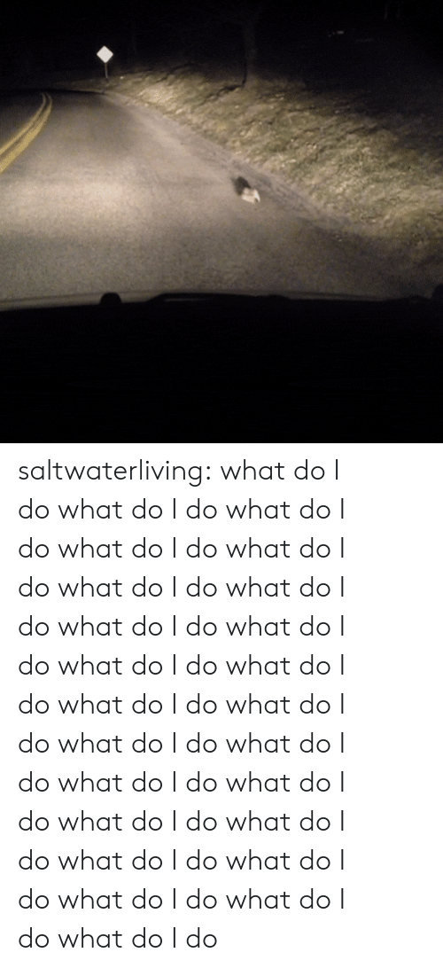 Target, Tumblr, and Blog: saltwaterliving:  what do I dowhat do I dowhat do I dowhat do I dowhat do I dowhat do I dowhat do I dowhat do I dowhat do I dowhat do I dowhat do I dowhat do I dowhat do I dowhat do I dowhat do I dowhat do I dowhat do I dowhat do I dowhat do I dowhat do I dowhat do I dowhat do I dowhat do I dowhat do I do